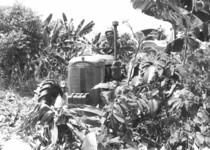 Trattore SAME Ariete in una piantagione in Venezuela