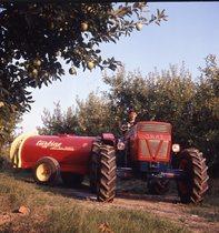 [SAME] Trattori Same in frutteto - Ferrara - 22/8/1969
