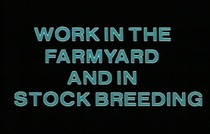 Work in the farmyard and in stock breeding