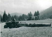 Trattore SAME Sametto per trasporto tronchi in Val di Non