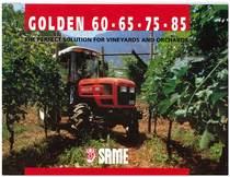 GOLDEN 60-65-75-85