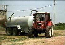 8: La coltivazione del mais - La coltivazione del riso: manuale del venditore