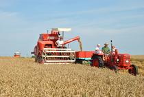 [Fahr] Mietritrebbia MDL e trattore D 180 H al lavoro nei campi