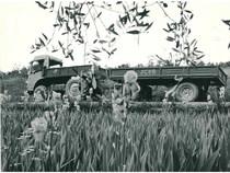 Samecar Agricolo con rimorchio