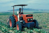 [SAME] trattore Vigneron 60 al lavoro con attrezzatura per la raccolta delle barbabietole