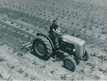 Trattore SAME 450 V a 2 ruote motrici con zappatrice multipla