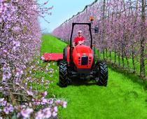 [SAME] trattore Frutteto 3 Natural al lavoro con barra falciante