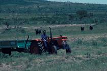[SAME] trattore Falcon al lavoro tra bufali, elefanti ed antilopi in Africa
