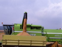 [Deutz-Fahr] mietitrebbia TopLiner 4075 HTS al lavoro