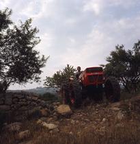 [SAME] Fotocolor Centauro in collina Calabrese - Corigliano - 3/2/67