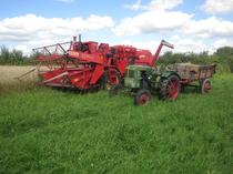 [Deutz] trattore F1L 514al lavoro in un campo di grano con rimorchio e con mietitrebbia Köla Combi Special
