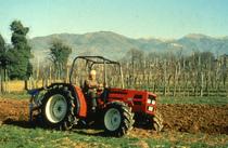 [SAME] trattore Argon 60 al lavoro con aratro