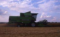 [Deutz-Fahr] mietitrebbia M 35.40 al lavoro in un campo di grano e al lavoro con trattore DX 90