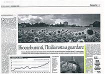 Biocarburanti, l'Italia resta a guardare