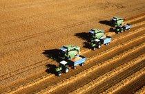 [Deutz-Fahr] mietitrebbie serie TopLiner al lavoro con trattori serie DX con rimorchio