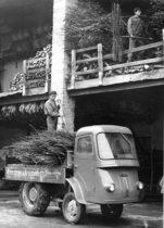 Samecar Agricolo per il trasporto di fascine di legna