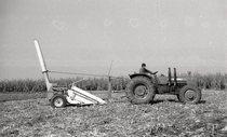 [SAME] Prove di ... per macchine raccoglitrici di granturco da foraggio, 1° ottobre 1971