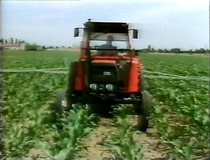 6: La preparacion del lecho de siembra - Los tratamientos y los trabajos entre hileras - La recoleccion del forraje: manual del vendedor