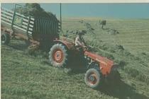 Trattore SAME Centauro con carro per la raccolta del foraggio (Alpi svizzere)