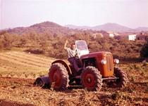[SAME] Fotocolor trattori Same, 8/9/60 (Azienda Scanzorosciate)