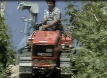 I trattori cingolati