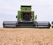 [Deutz-Fahr] mietitrebbia TopLiner 8 XL e trattore Agrotron 200 al lavoro
