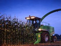 [Deutz-Fahr] trinciamais Gigant 400 e trattore Agrotron 6.05 S con rimorchio al lavoro