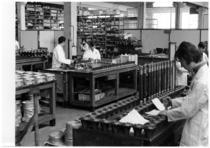 Stabilimento Same - Operai al lavoro