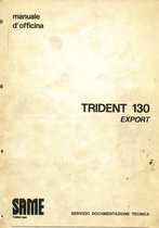 TRIDENT 130 EXPORT - Manuale d'officina