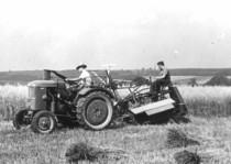 [Deutz] trattore F1L 514 al lavoro