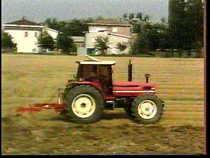 8: El cultivo del maiz - El cultivo del arroz: manual del vendedor