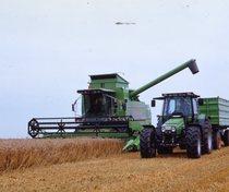 [Deutz-Fahr] mietitrebbia TopLiner 4080 HTS al lavoro e trattore Agrostar con rimorchio