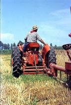 [SAME] trattore DA 30 al lavoro in campo