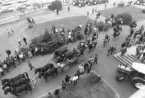"""Manifestazione """"Tortellini Rana"""" presso lo stabilimento di Treviglio"""