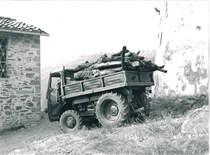 Samecar Agricolo per trasporto legna